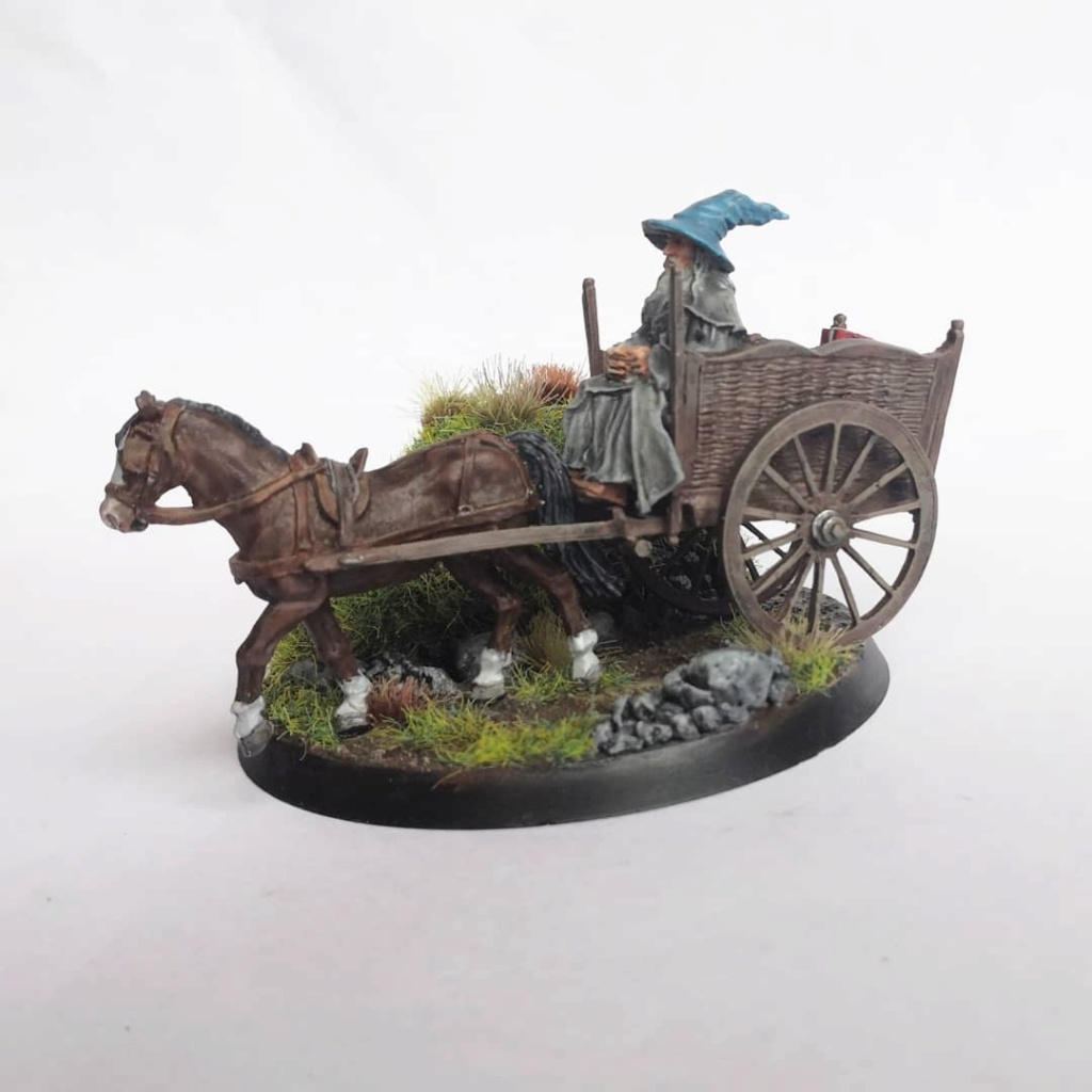 Le Pèlerin Gris sur sa charrette. Img_2209