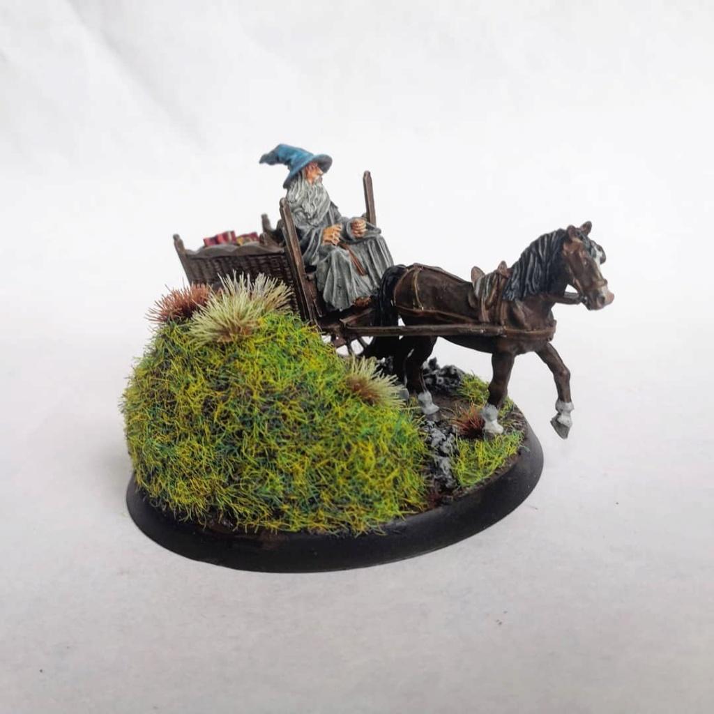 Le Pèlerin Gris sur sa charrette. Img_2211