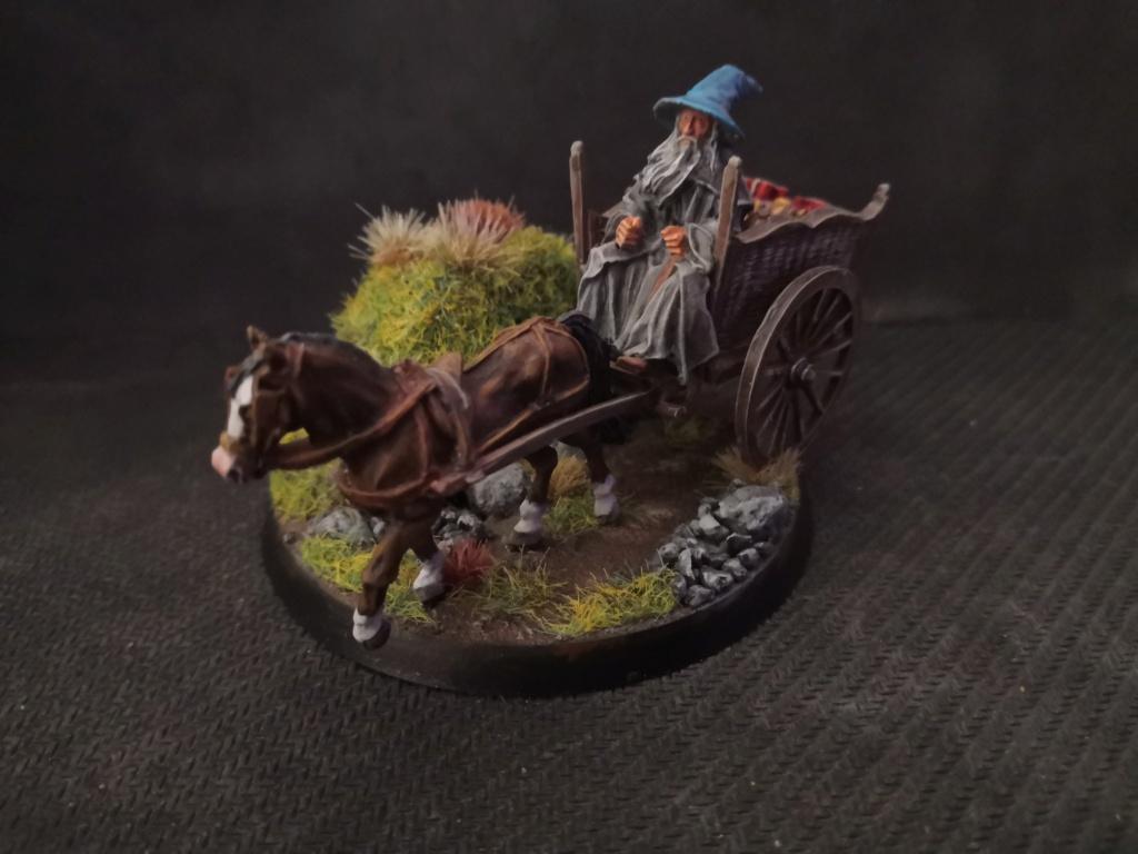 Le Pèlerin Gris sur sa charrette. Img_2212