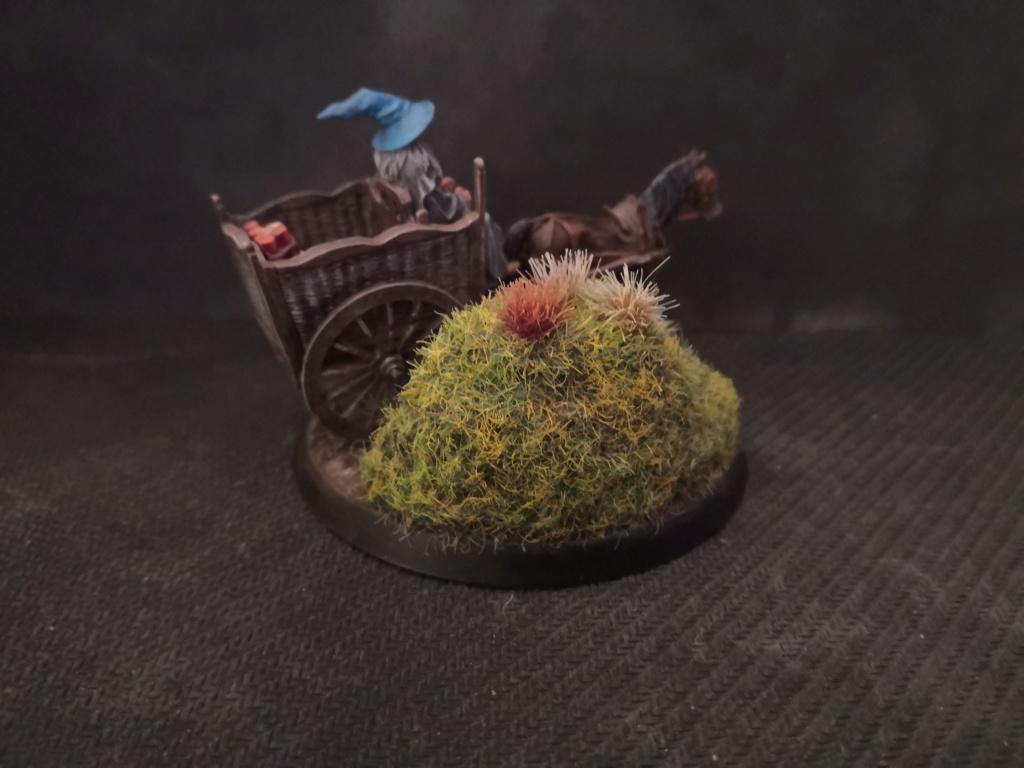 Le Pèlerin Gris sur sa charrette. Img_2214