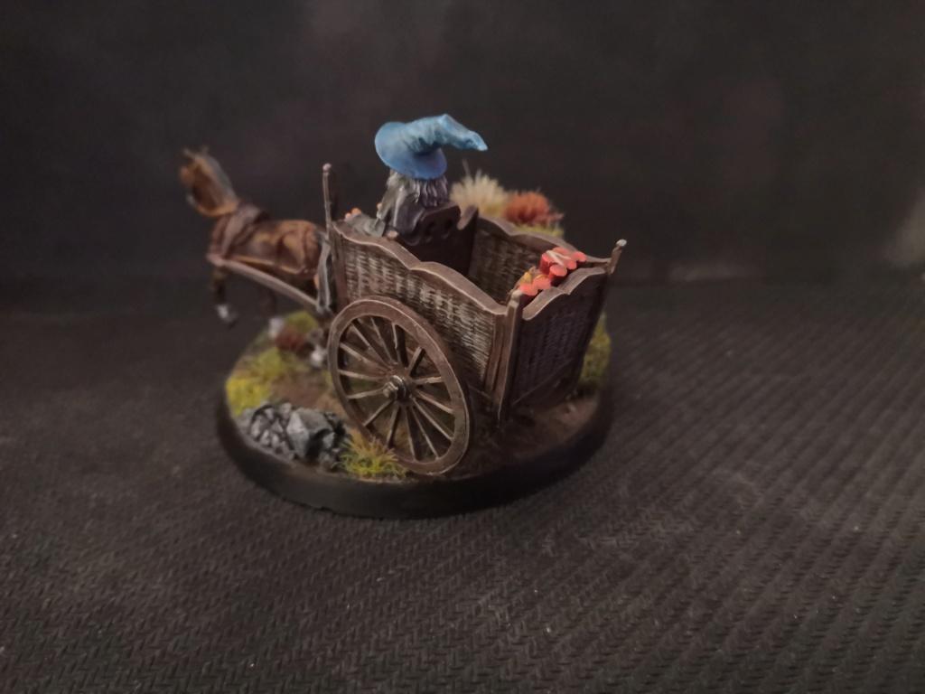 Le Pèlerin Gris sur sa charrette. Img_2215