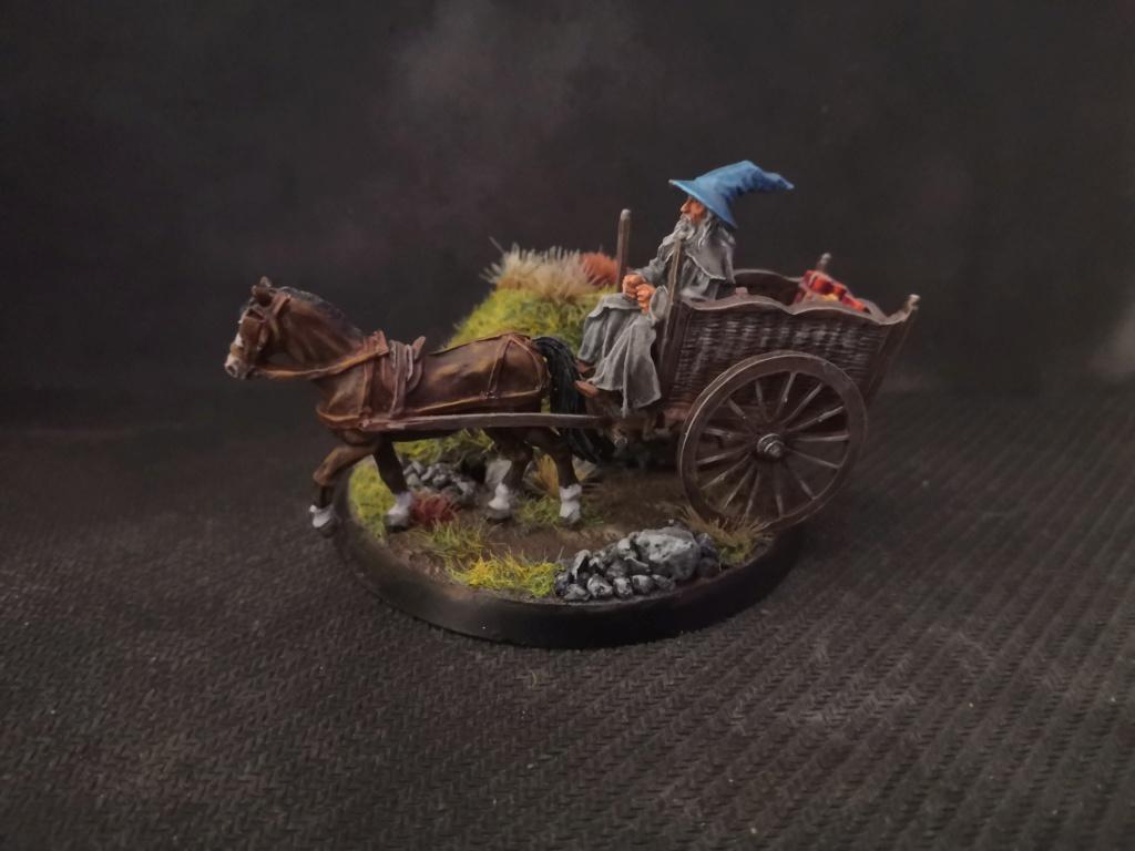 Le Pèlerin Gris sur sa charrette. Img_2216