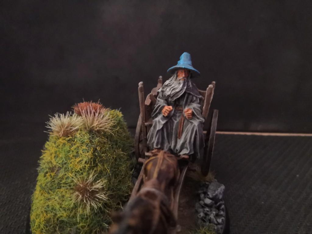 Le Pèlerin Gris sur sa charrette. Img_2217