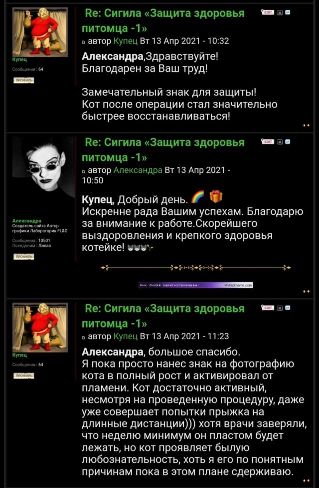 Сигила «Защита здоровья питомца -1» Screen25