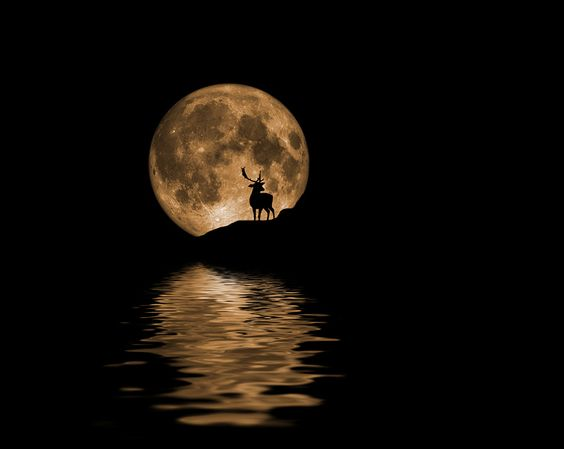 La belleza de la luna Luna10