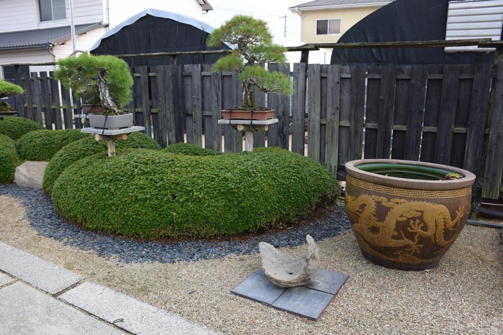 Voyage au Japon, à Kinashi Dsc_0306