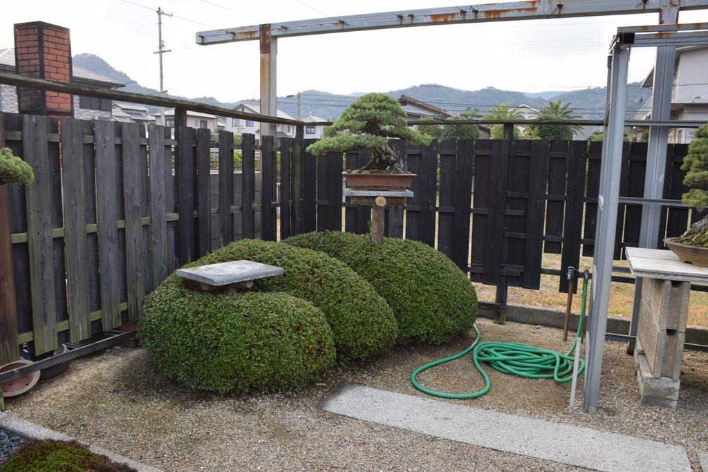 Voyage au Japon, à Kinashi Dsc_0393