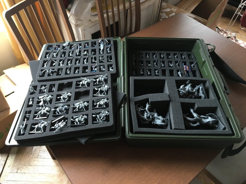[Vente] Armées RDT et Elfes noirs + Mallette + Table de jeu Img_1116