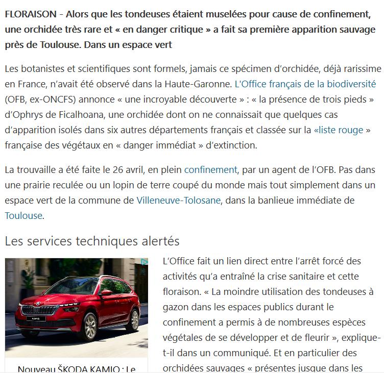 Des nouvelles de Villeneuve tolosane Captur10