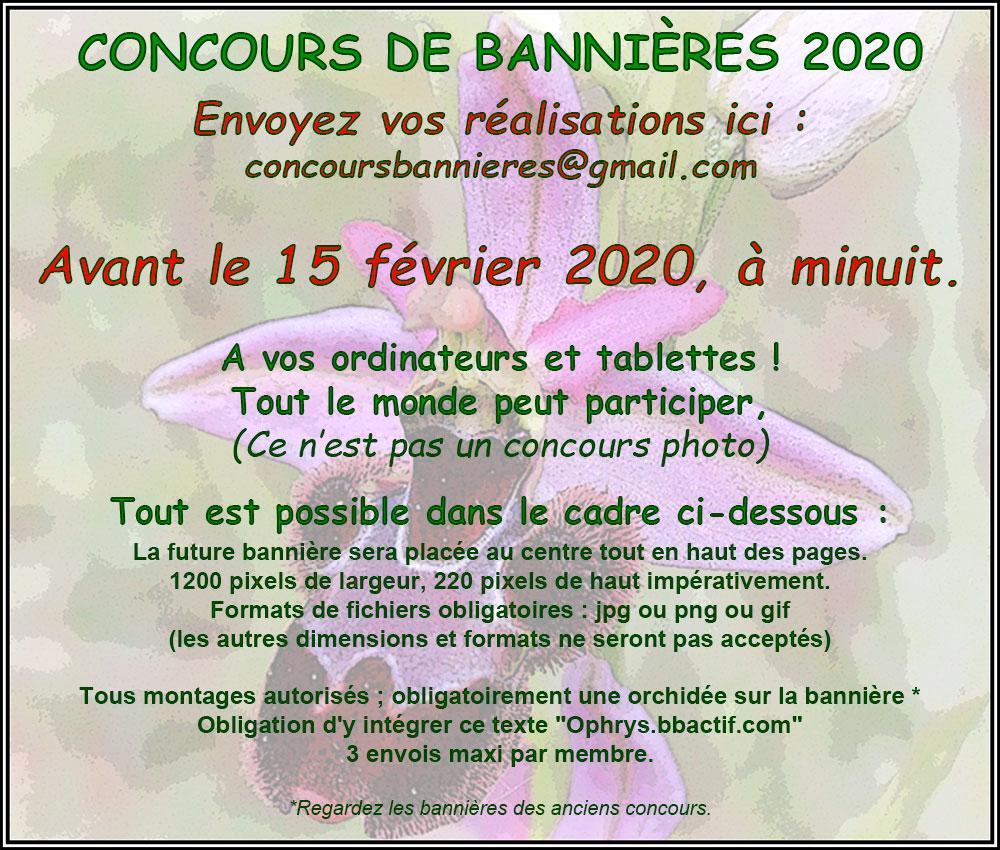 LE CONCOURS, 2020, DE BANNIÈRE Ophrys16