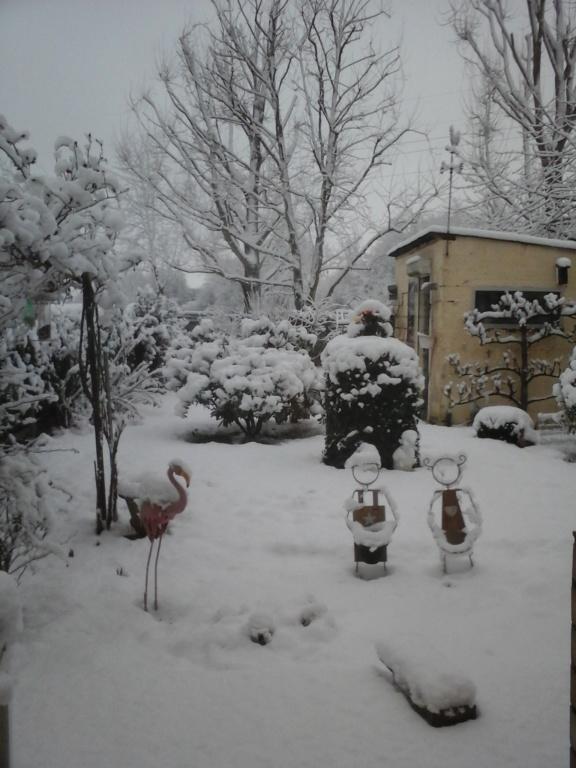 Appolon et la neige 20190110