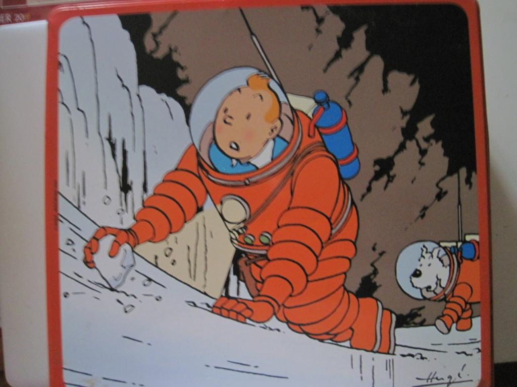Pour les fans de Tintin - Page 17 Img_2915