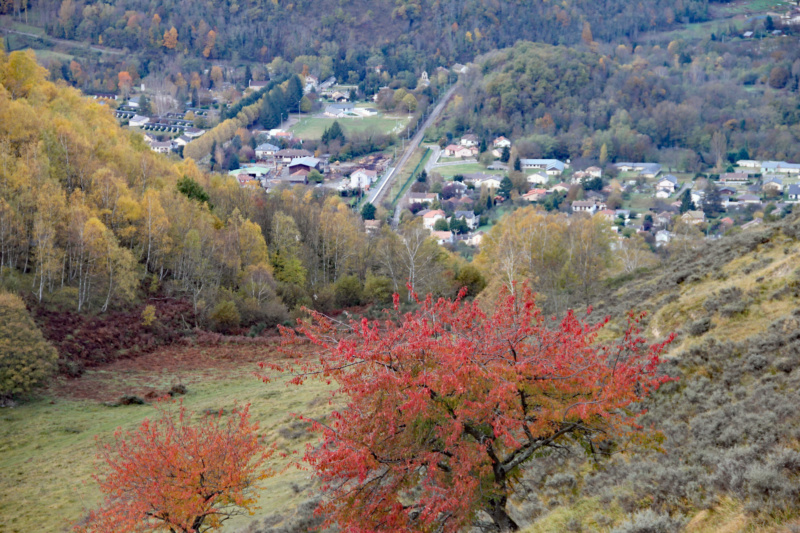 Tons d'automne Img_1843