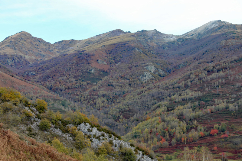 Tons d'automne Img_1844