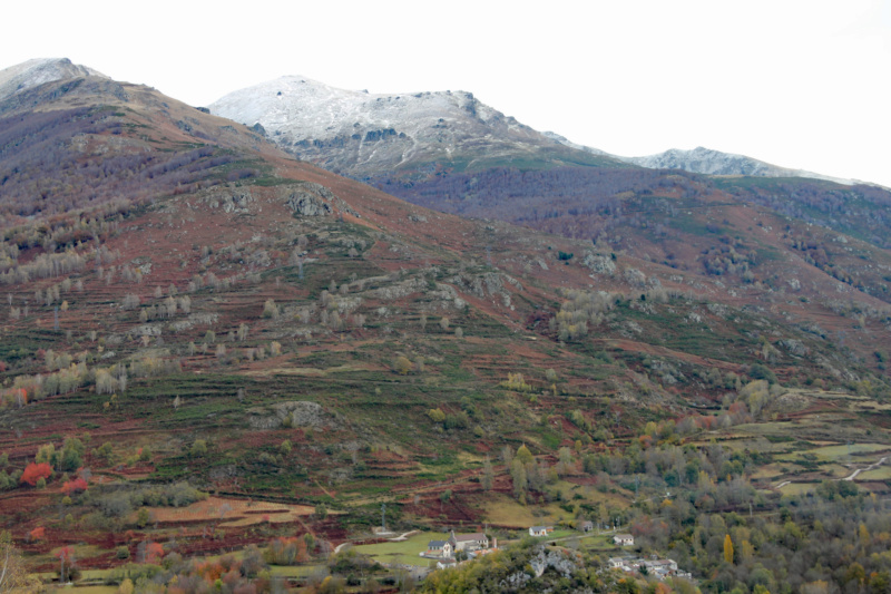 Tons d'automne Img_1845