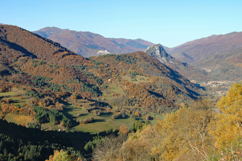 Tons d'automne Img_1865
