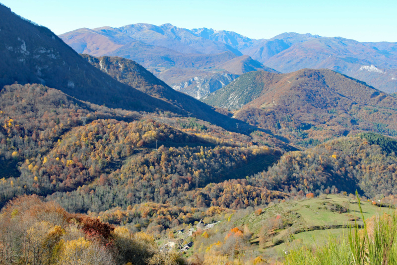 Tons d'automne Img_1914