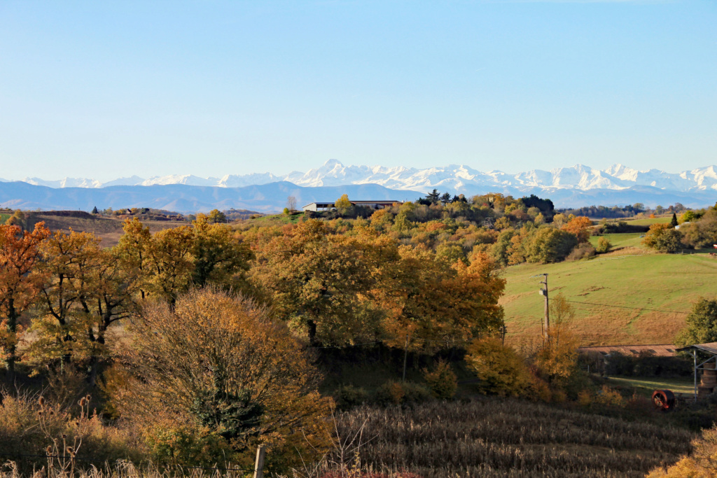 Tons d'automne Img_3556
