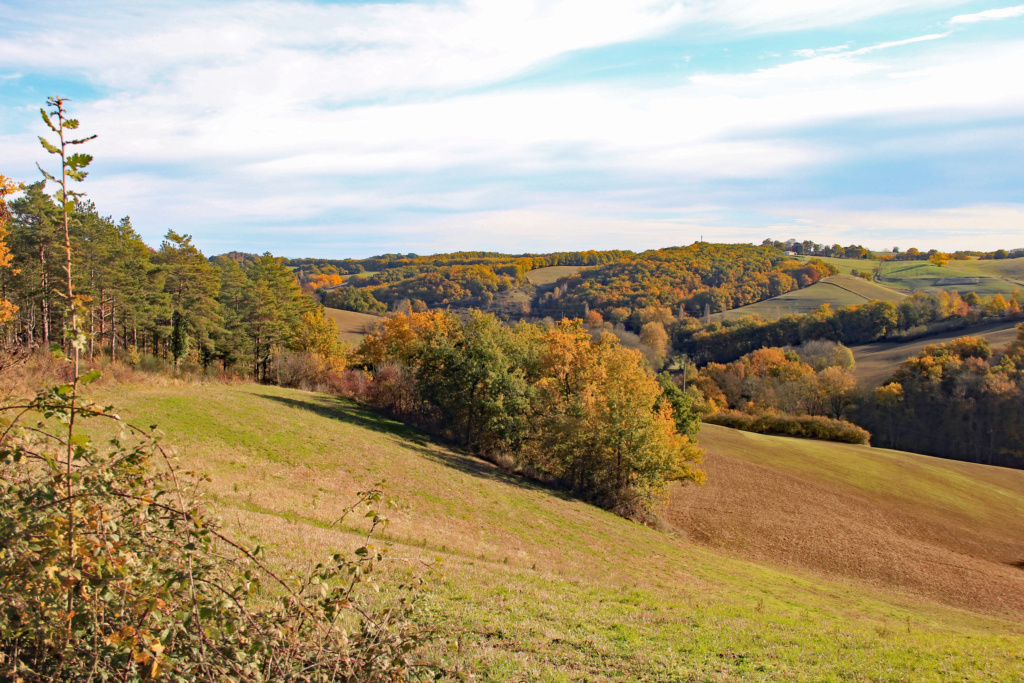 Tons d'automne Img_3557