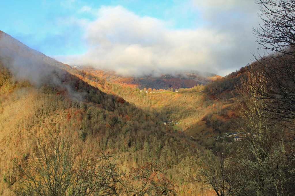Tons d'automne Img_3562