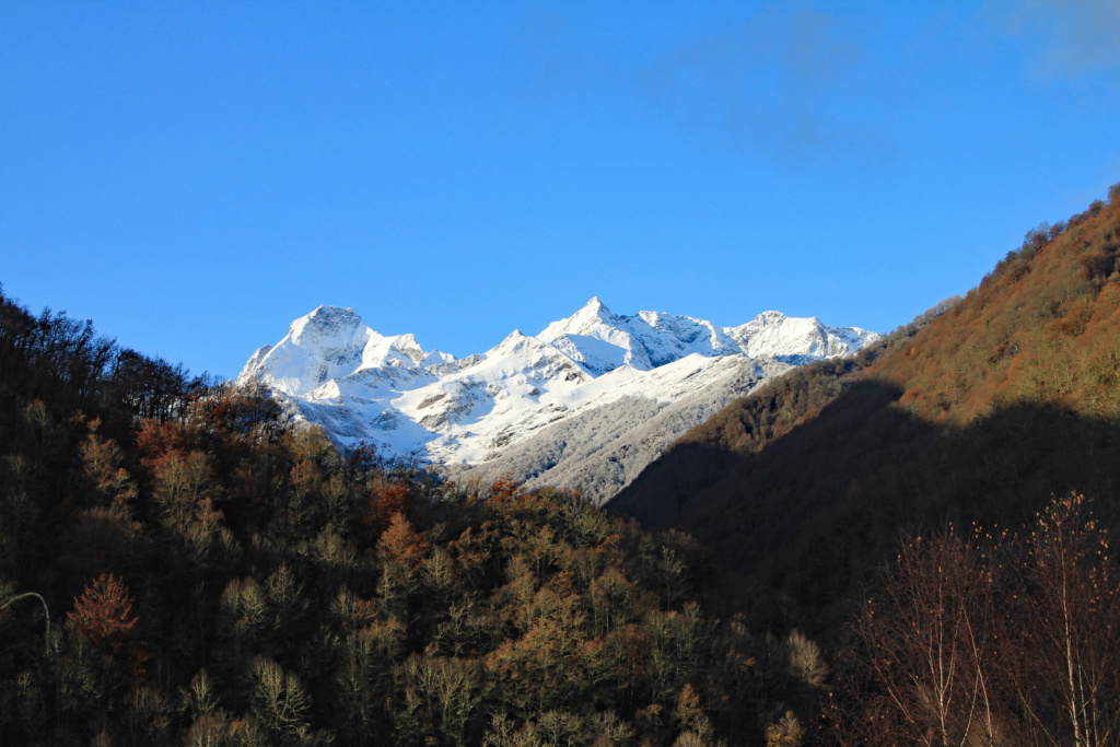 Tons d'automne Img_3563