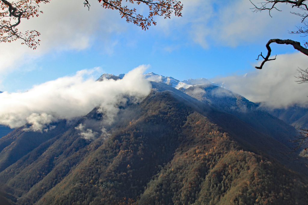 Tons d'automne Img_3566