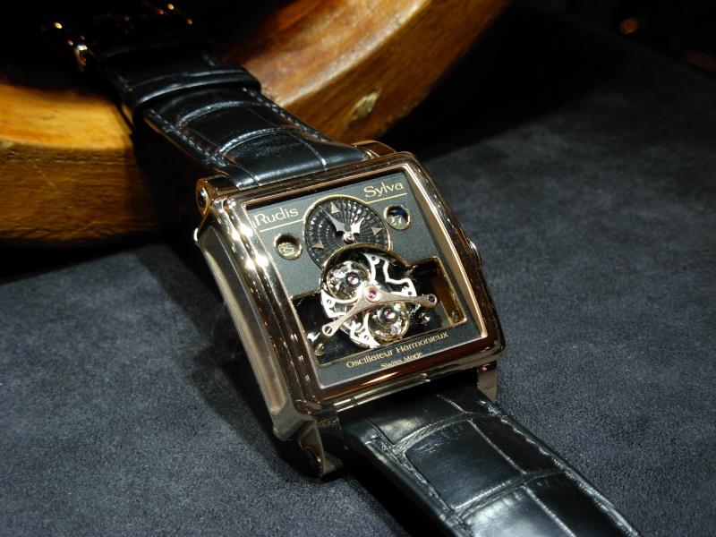 vacheron - COMPTE RENDU salon belles montres 2009 Dscn0411