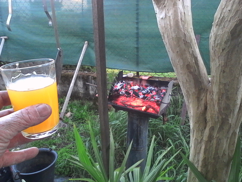barbecue  Img_2042