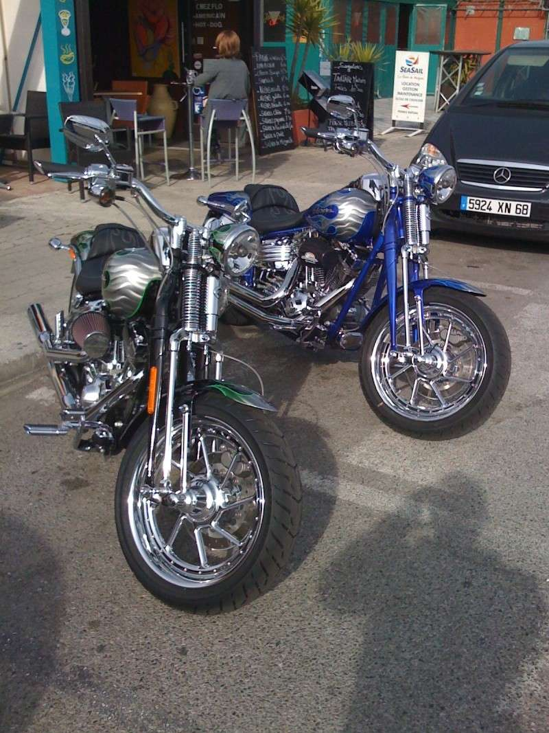 Combien de Softail sur le forum Passion-Harley - Page 5 Img_0010