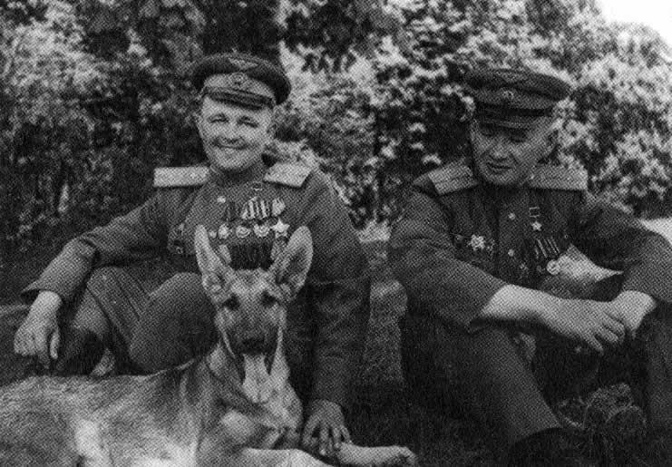 Julbars,le celebre chien de detection de mines 3-510