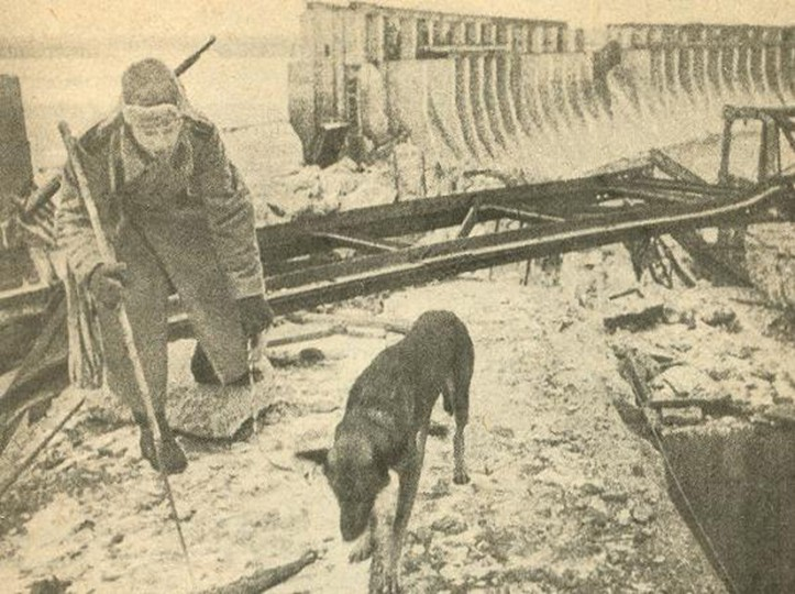 Julbars,le celebre chien de detection de mines 6-110