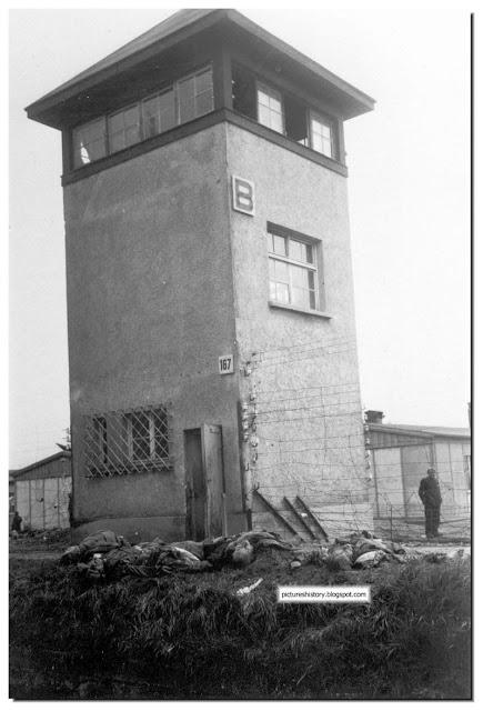 Les allies devenus violeurs et assassins? Dachau13
