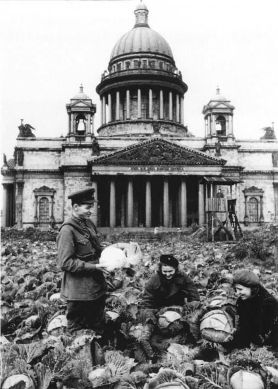 Bataille de Léningrad - Page 2 Lening17