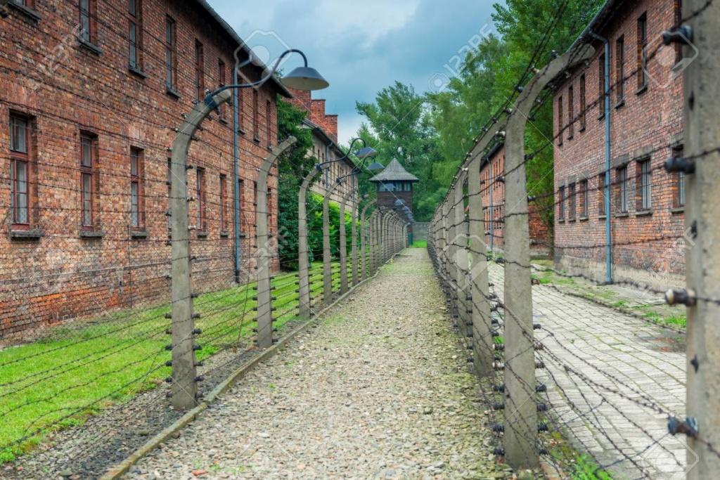 Faut-il laisser disparaître le camp d'Auschwitz ? Libera11