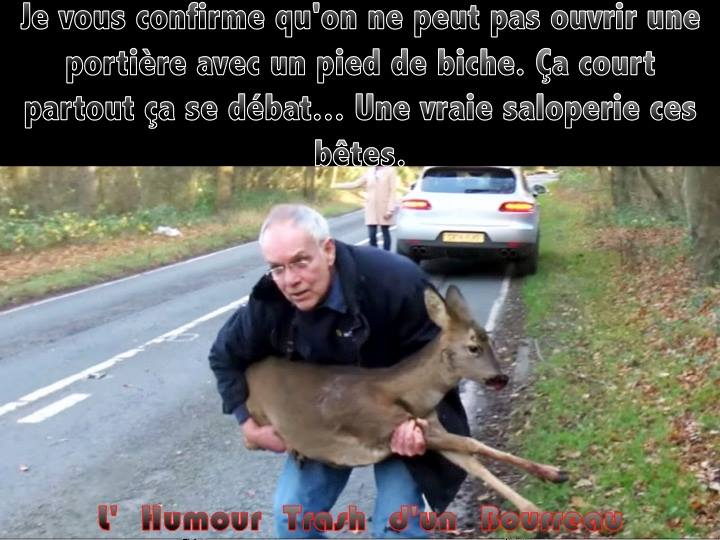 Humour divers - Page 2 Lolgd-10