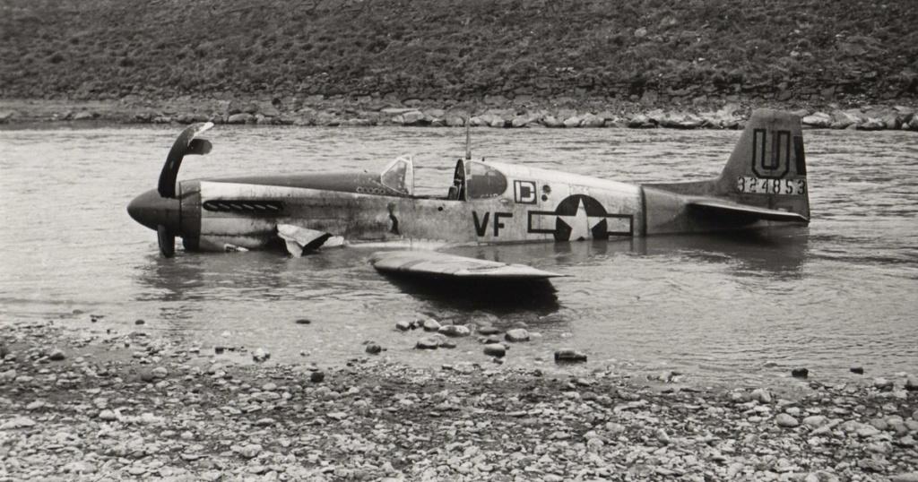 Avions insolites - Page 27 P-51_m10