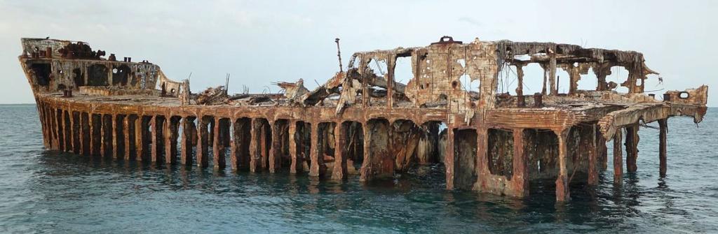 Navires en beton Sapona11