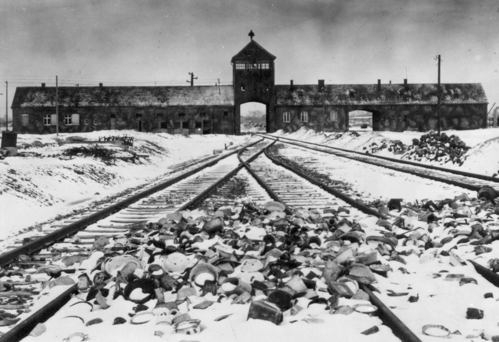 Faut-il laisser disparaître le camp d'Auschwitz ? Shuter11