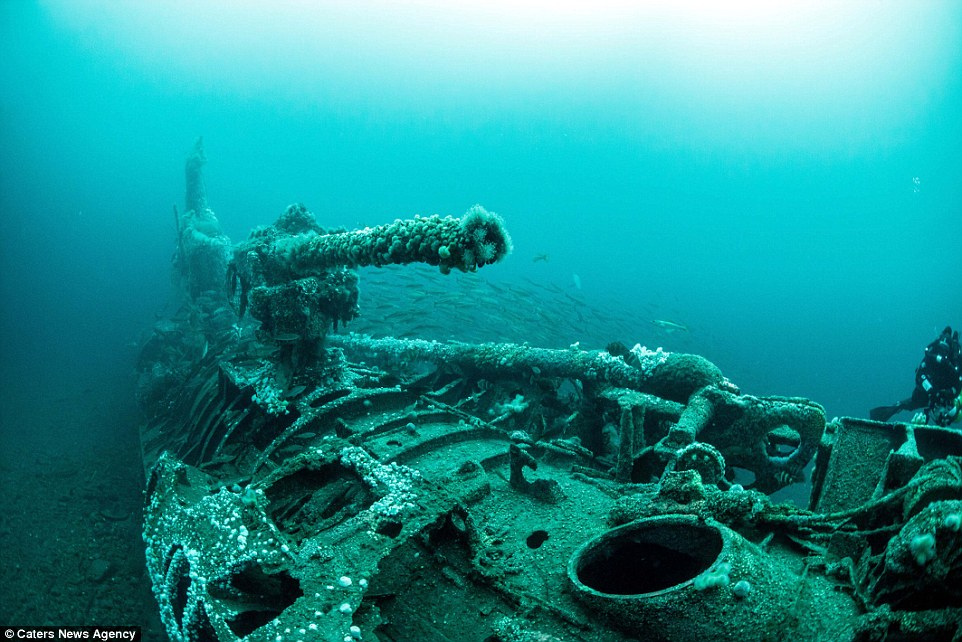 SS Empire Heritage  U-8910