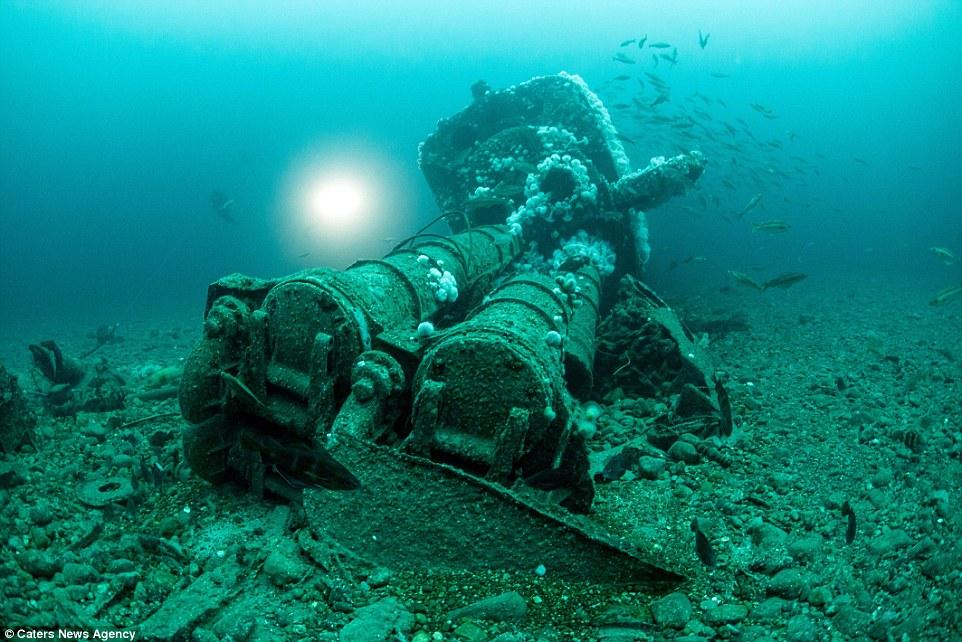 SS Empire Heritage  U-898810