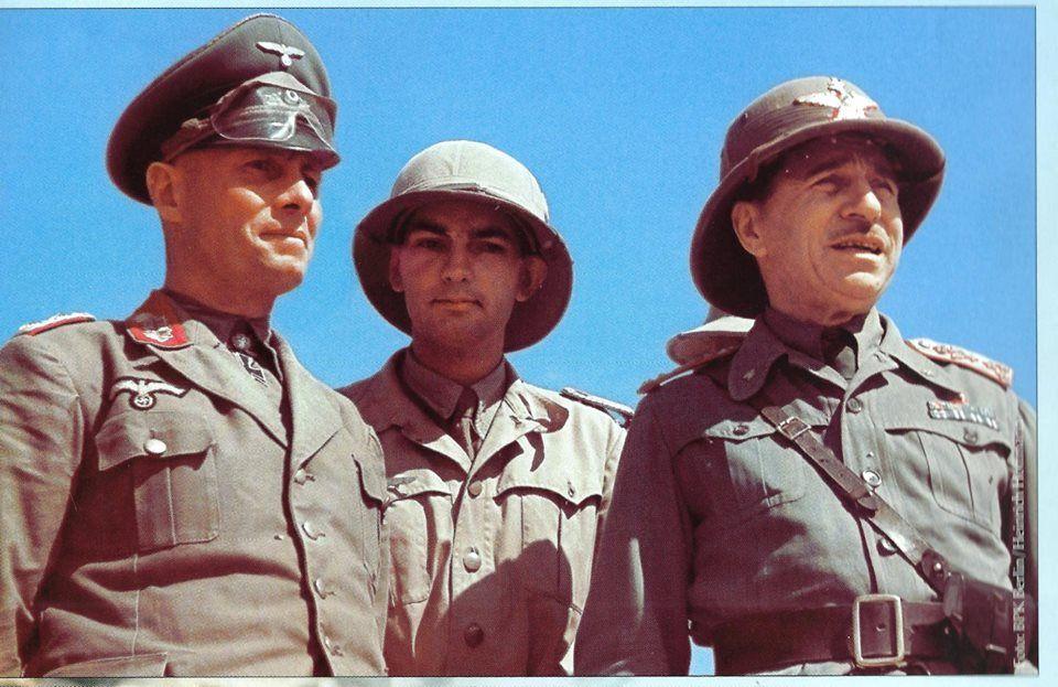 Les vehicules de Commandement de Rommel Z242