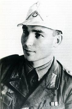 Les vehicules de Commandement de Rommel Z247