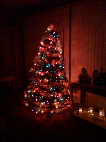 Post up pics of you holiday decorations Tree210