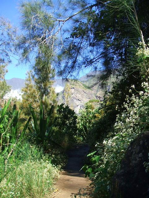 Les paysages de Fleurdesel - Page 6 Run710