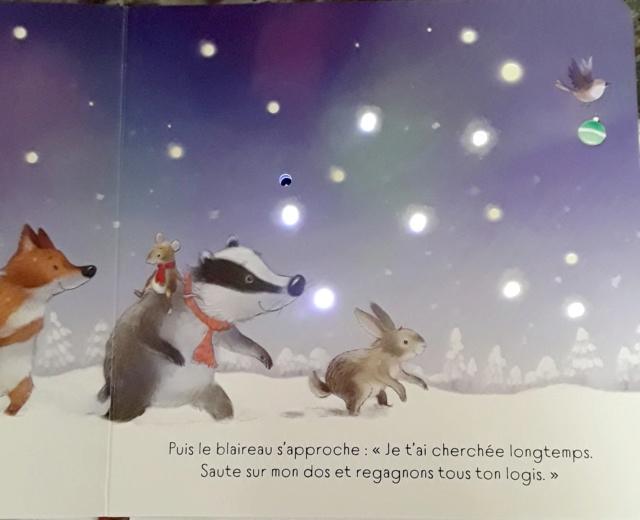 TAPLIN Sam et FRIEND Alison - Brille, brille petit sapin de Noël ! 45512010