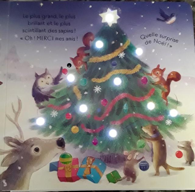 TAPLIN Sam et FRIEND Alison - Brille, brille petit sapin de Noël ! 45579910