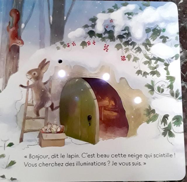 TAPLIN Sam et FRIEND Alison - Brille, brille petit sapin de Noël ! 45660910