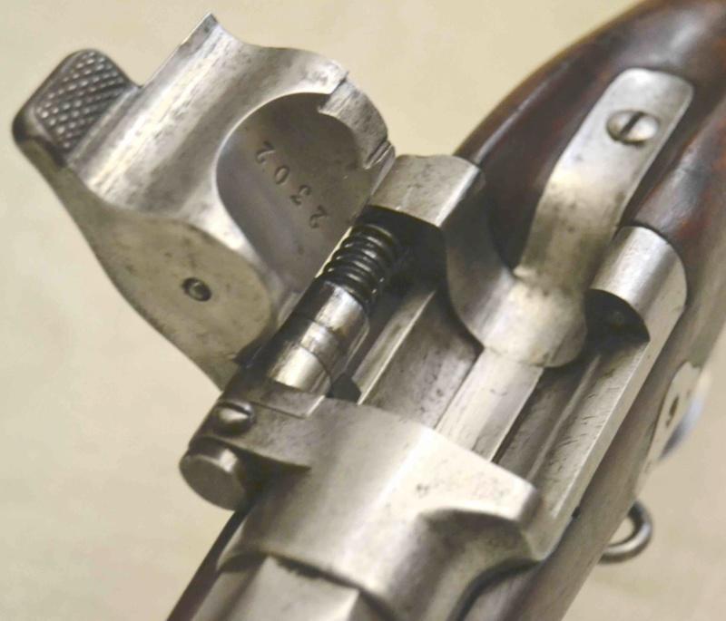 Mon fusil d'Infanterie Modèle 1867 Fu186726