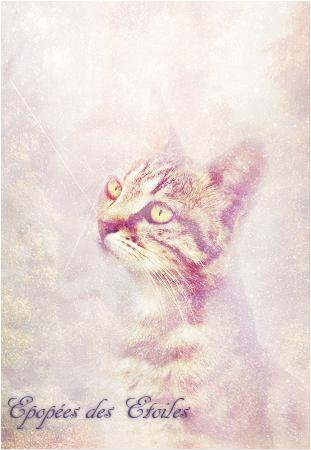 ♛Unknown Cat Battleground♛ - Page 12 Epopee11