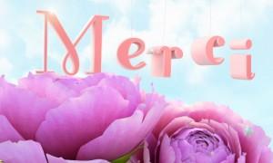 MERCI Cc_jt_11
